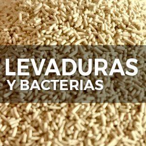 LEVADURAS Y BACTERIAS