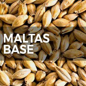 MALTAS BASE