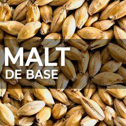 MALT DE BASE