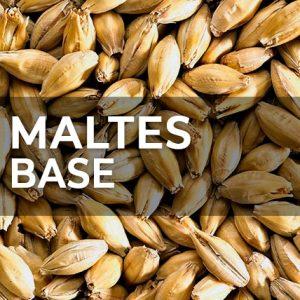 MALTES BASE